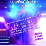 Concert «Tribute of Céline Dion» samedi 09 septembre 2017 21h00 aux Arènes d'Alleins