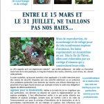 Quelques conseils pour préserver la biodiversité dans notre village